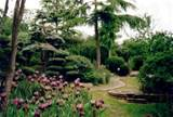 Japanese Garden Design Plans for Small Land : Beautiful Scenery Green ...