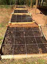 added 3 more 4 4 ceder raised beds to my vegetable garden this year