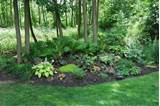 woodland gardens garden ideas pinterest