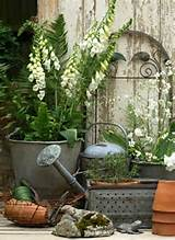 pretty garden ideas pinterest