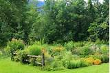 rustic country gardens pinterest
