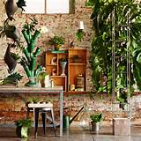 garden unique indoor garden ideas home design interior and decoration