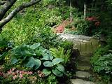 shade garden path contemporary landscape other metro by bear