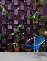 ... wall?: Decor, Ideas For, Jardim Vertical, Garden Ideas, Living Wall