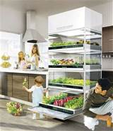 ... hydroponic unit lets you grow a garden in your kitchen : TreeHugger