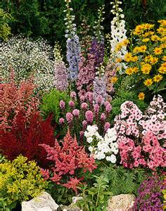... Gardens Ideas, Gardens Perennials, Cottages Gardens, Perennials Plants