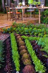 ... long weekend and are inspired by these beautiful vegetable gardens