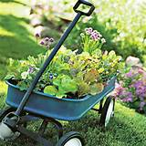 gardening container plans ideas simple salad garden containers page 1
