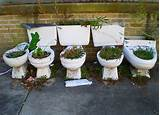 toilet gardening arrg funny garden ideas pinterest