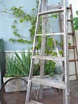 rustic garden | gardens ideas | Pinterest