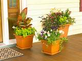 How to Design a Container Garden | Landscaping Ideas and Hardscape ...
