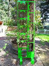 This Green Steel Trellis looks great in any garden.