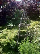 trellis unique gardening ideas pinterest