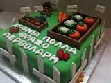 Vegetable Garden Cake !!!