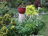 early spring tapestry garden ideas pinterest