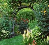 amazing garden design pictures ideas exciting design garden nice