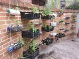 garden orchard huerta urbana en reciclaj my garden green ideas