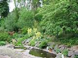 Low Water Maintenance Gardens « Search Results « Landscaping Gallery