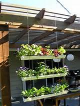Transforme calhas em jardineiras suspensas | Cozinhas Itatiaia