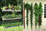 vertical garden planters ideas