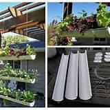 Rain gutter gardening | garden | Pinterest