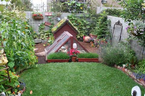 Video Description: gardening ideas pinterest - Gardening Ideas on a ...