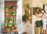 Contemporary Vertical Garden Ideas | For the Home | Pinterest
