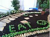 so simple and fun | Gardening ideas | Pinterest