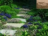 garden path idea traditional landscape new york by summerset