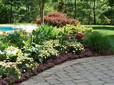 New Jersey Perennial Garden | Perennial Flowers New Jersey | New ...