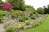 Rocaille de jardin: idées aménagement et décoration
