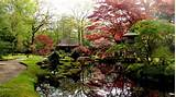 10 japanese landscaping garden start diy growing your own garden