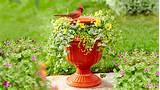 Birdbath Planter Urn