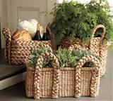 Garden: More Repurposing Ideas