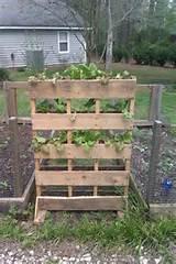 pallet garden | Pallet Ideas! | Pinterest
