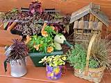 Original-Nancy-Ondra_unique-container-gardens-Dads-garden_s4x3.jpg ...