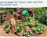 Keyhole Gardens, African Gardens, Sendacow.org.uk