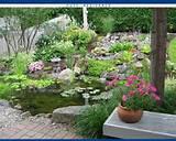 pond inspirations garden and outdoor living ideas pinterest