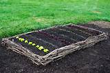 Raised Bed Gardens - The Big Reveal