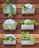 Ideias simples podem fazer toda a diferença! Que tal plantar temperos ...