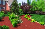 Color Specialist in Charlotte: What Color Mulch to Choose