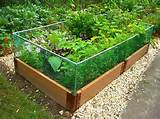 easy vegetable gardening home exterior design ideas