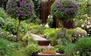 ... > Container Gardening > Best Flowers For Container Gardening Ideas