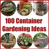 100 Container Gardening Ideas