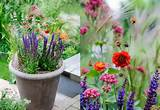 home inspirations container gardening container gardening magazine