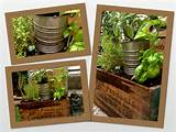 Herbs planted in vintage boxes and milk crates. I love hunting in ...
