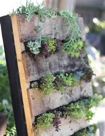 Pallet Garden - Exterior Beauty DIY Ideas | Pallet Furniture Plans
