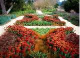 Drought Tolerant Garden Design