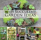 DIY Succulent Garden Ideas at empressofdirt.net