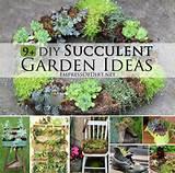 diy succulent garden ideas at empressofdirt net